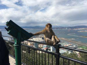 Aber ved Gibraltar
